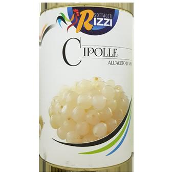CIPOLLINE KG.5 -